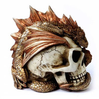 Dragon Keeper's Skull Alchemy Gothic