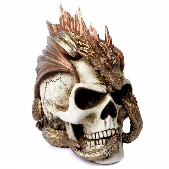 "Dragon ""Keeper's Skull"" / Dragons Colorés"