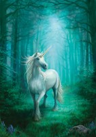 carte anne stokes licorne forest unicorn
