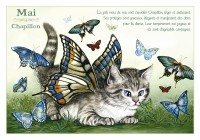 Carte Postale Severine Pineaux Chat Mai Chapillon CPK085