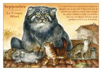 Carte Postale Severine Pineaux Chat Septembre Croque-Minet CPK089