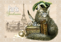 Carte Postale Severine Pineaux Chat Paris - Sorbone CPK062