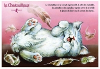 Carte Postale Severine Pineaux Chat Le Chatouilleux CPK127