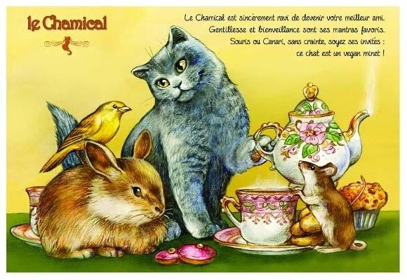 Carte Postale Severine Pineaux Chat Le Chamical CPK129