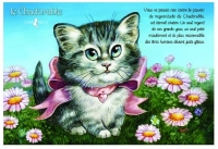 Carte Postale Severine Pineaux Chat Le Chadorable CPK133