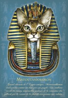 Carte Postale Chat Severine Pineaux Matoutankhamon CPK048
