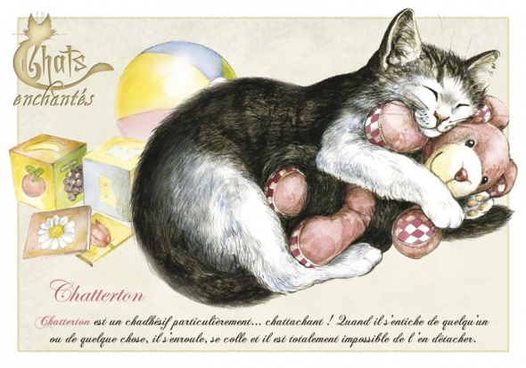 "Carte Postale Chat ""Chatterton"" / Cartes Postales Chats"