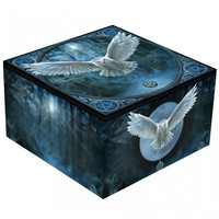 Anne Stokes coffret avec miroir Awaken Your Magic
