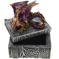 Coffret Dragon violet 67201