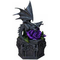Anne Stokes coffret Dragon Beauty NOW6852