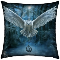 Anne Stokes coussin Awaken Your Magic