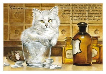 "Carte Postale Chat ""Chaspirine"" / Cartes Postales Chats"