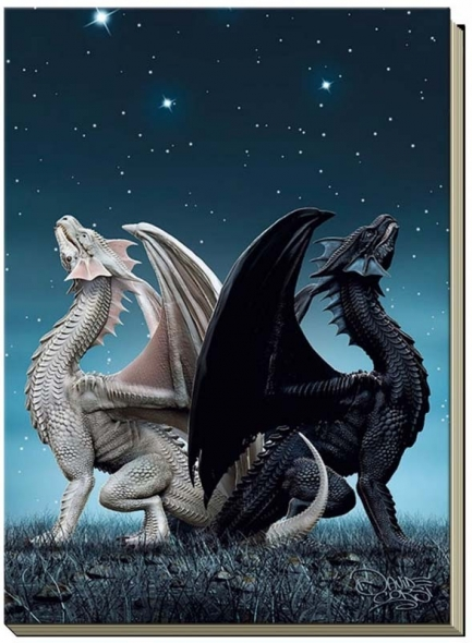 "Grand carnet ""Draconis"" / Papeterie Dragons"