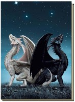 grand carnet dragons draconis