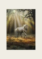 Anne Stokes Reproduction d'Art Glimpse of a Unicorn