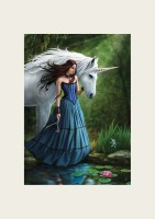 Anne Stokes Reproduction d'Art Contemplation Unicorn