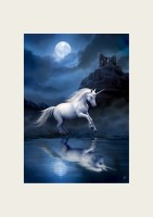 Anne Stokes Reproduction d'Art Moonlight Unicorn