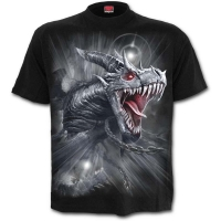 t-shirt spiral direct Dragon's Cry