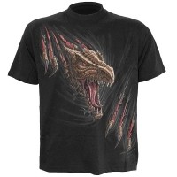 t-shirt spiral direct Dragon Rip