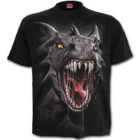 T-Shirt Spiral Direct Roar of the Dragon