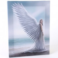 anne stokes toile sur chassis Guiding Spirit