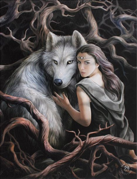 Anne stokes toile sur chassis soul bound - Toile sur chassis ...