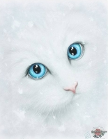 Linda M. Jones toile sur chassis Winter Cat