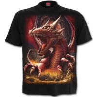 t-shirt spiral direct Awake the Dragon