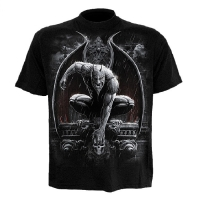 t-shirt spiral direct Stone Guardian